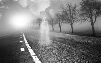 Weiterlesen: Paranormal Activity