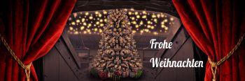b_350_1200_16777215_00_images_201516_fanleben_weihnachten2015.jpg